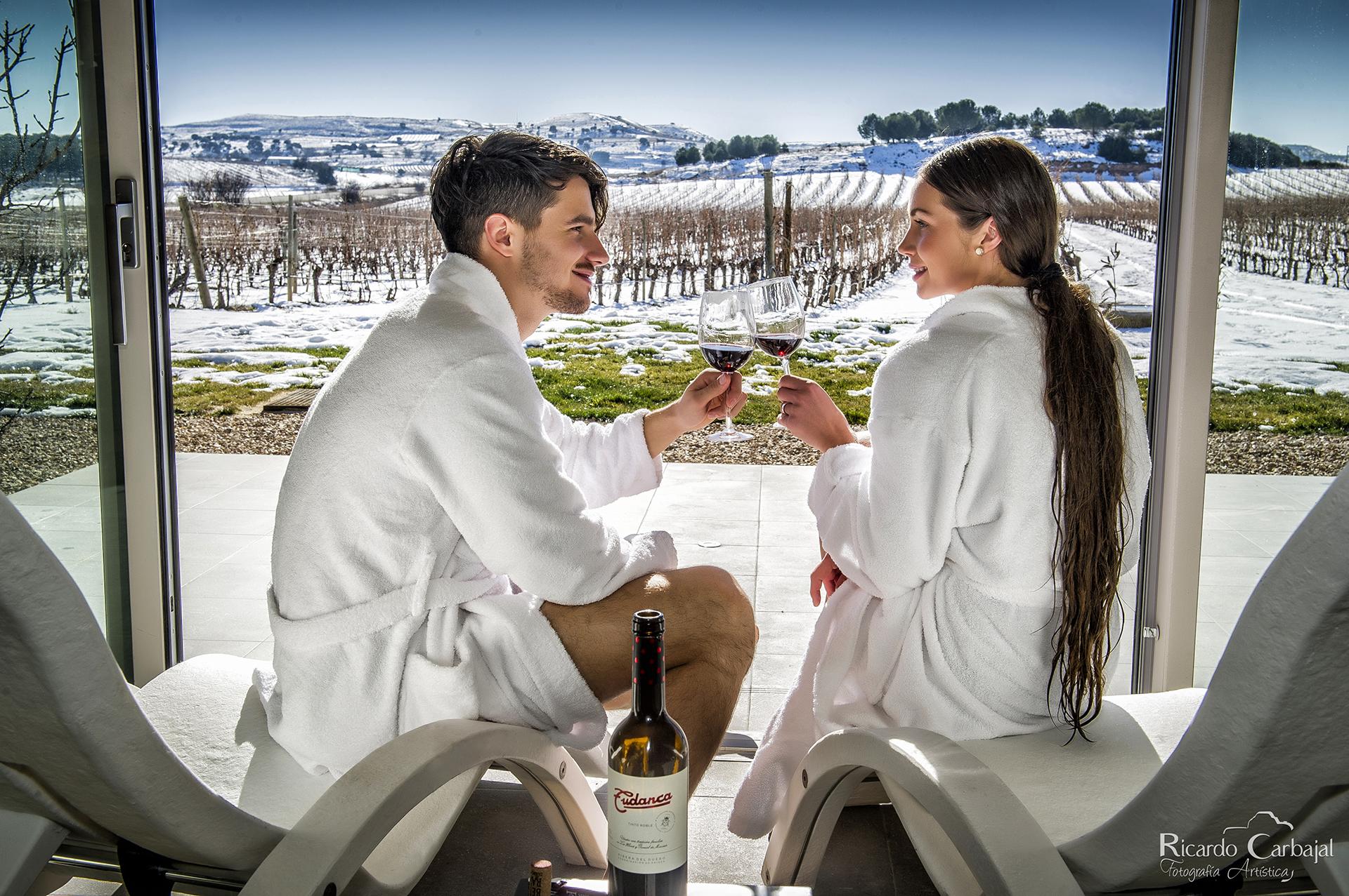 Spa entre viñedos Tudanca - Aranda de Duero